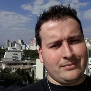Rodrigo Stefani Domingues