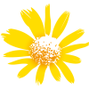 Erling M. avatar