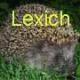 lexich